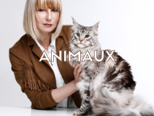 SEANCE-PHOTO-ANIMAUX-COMPAGNIE